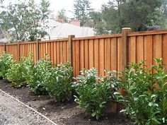 Chain Link Fence Slats Sold At Home Depot Partitions
