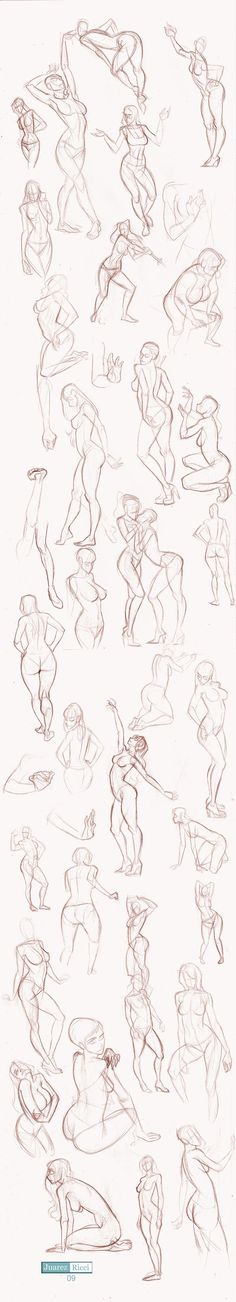 Studies Part II by juarezricci.deviantart.com on @deviantART | draw