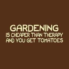 Gardening is awesome therapy...and you get tomatoes!