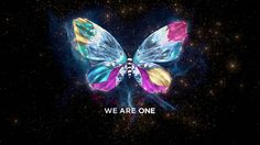 Still like Eurovision 2013 motto, We Are One. The butterfly, too! 3d Animation, Motion Design, Programming, Creative Director, Art Director, Semi Final, Best Tv, Live Action, Motion Graphics