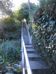 Gallery Secret Stairs LA Welcome To Secret Stairs LA, A Walking And Hiking