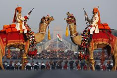 CAMELLOS ADORNADOS - Dueling camels: India's Border Security Force members rode camels as they rehearsed Sunday in New Delhi for the 'Beating the Retreat' ceremony, which marks the end of Republic Day celebrations. (Adnan Abidi/Reuters) Jan. 27 - Photo Journal - WSJ