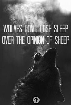 Super Quotes For Teens Funny Wolves Ideas Wolf Pack Quotes, Lone Wolf Quotes, Positive Quotes, Motivational Quotes, Funny Quotes, Inspirational Quotes, Positive Thoughts, Wisdom Quotes, Quotes To Live By
