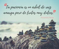 La paciencia es un árbol de raíz amarga, pero de frutos muy dulces. Movie Posters, Sweet Treats, Patience, Proverbs, Hipster Stuff, Film Poster, Popcorn Posters, Film Posters