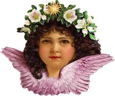 Glanzbilder - Victorian Die Cut - Victorian Scrap - Tube Victorienne - Glansbilleder - Plaatjes : Engelsgesicht - angel face - visage d'ange - Glanzbild - Victorian Die Cut - tube victorienne - Victorian Scrap - clipart