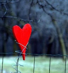 """Só Nosso. """"Our Only"""" Red Heart on wire. c.                                                           Http://faraway.blogs.sapo.pt/arquivo/2005_04.html"""