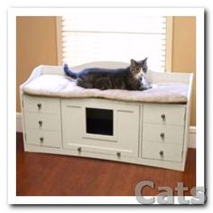 Such an great idea.  Cat Bench Bed &amp  Litter Cabinet.