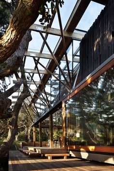 Gallery of Under Pohutukawa / Herbst Architects - 8