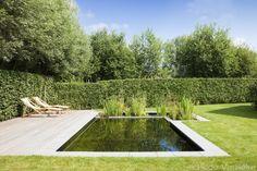 Prachtige zwemvijver met strakke vorm aangelegd door De Waterarchitect, demooistezwembaden.be