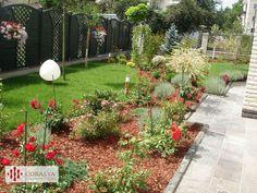 Dimineata racoroasa intr-o gradina de vis... Private Garden, Gardens, Plants, Outdoor Gardens, Plant, Garden, House Gardens, Planets
