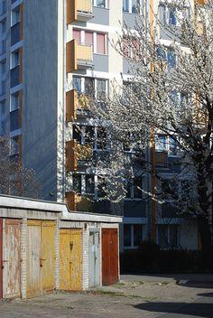 Bielany/Żoliborz, Warszawa