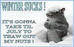 Image result for winter sucks