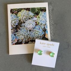 Kate spade gumdrop studs -small NWT. Perfect for Spring! kate spade Jewelry Earrings