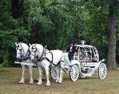 My Cinderella Carriage: )