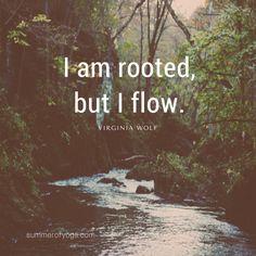 I am rooted, but I flow. ~ Virginia Wolf ~~~~~~~~~~~~~~~~~~~~~~~~~~~~~~~~~~~~~~~~~~~~~~~~~~~~~~~~~~~~~~~~~~~~~~~~~~~~~~~~~~~~~~~~~~~~~~~~~~~~~~~~~~~~~~~~~~~~ #summerofyoga #flowyoga #shareyoga #yogalove #yogalife  #yogachallenge   http://www.summerofyoga.com?utm_content=bufferf1ff3&utm_medium=social&utm_source=pinterest.com&utm_campaign=buffer