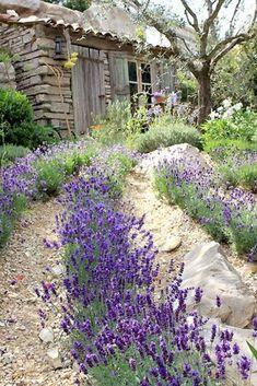 Magical house and garden decoration with lavender - Garden Decor Lavender Cottage, Lavender Garden, Lavender Fields, Lavender Flowers, Lavander, Natural Garden, Purple Roses, Tuscan Garden, Mediterranean Garden