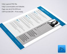 Professional Resume Template  Mac Resume Template  Great For