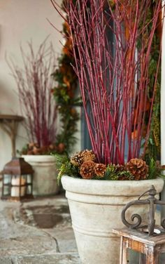 Festive red dogwood branches add depth and elegance to the entry's holiday display. Potting urns are filled with sprigs of evergreen and pinecones for wintery touches.