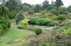 Royal Botanic Garden Edinburgh - Flip - Picasa Webalbums