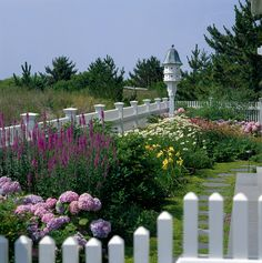 birdhouse in a border of pink and lavender hydrangeas, yellow daylilies, white daisies, and purple coneflowers