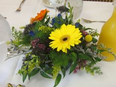 Wildflower yellows and oranges make a great contrast to royal blue and yellow wedding palettes.