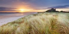 View our exclusive handpicked coastal holiday homes in Northumberland, the Scottish Borders and East Lothian. Colchester England, Northumberland Coast, Farne Islands, Kent Coast, Luxury Holiday Cottages, Pembrokeshire Coast, York Minster, Uk Destinations