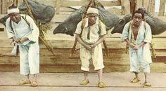 독일 여행가가 본 120년 전 조선 : 청일전쟁 전야, 1600만명의 로빈슨크루소 : 네이버 블로그