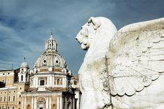 roma wings