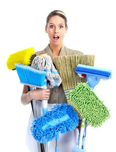 Did you know that the Norwex Mop System will replace all of these products? Ask me how you can earn the mop system for FREE! Dry Carpet Cleaning, Deep Cleaning Tips, Green Cleaning, Rug Cleaning, Spring Cleaning, Cleaning Hacks, Office Cleaning, Upholstery Cleaning, Furniture Cleaning
