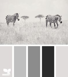 Turn any color lighter, darker or muted by adding white, black or grey colors respectively.