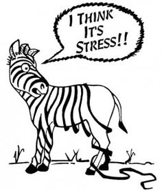 Stressing? elev8 can help you to cope better!