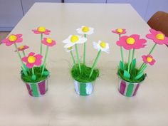 Fleurs en pot pour la fêtes des mères .