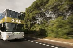 The InterCity GOLD bus offers luxury coach transport between New Zealand towns and cities.