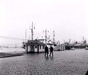 Port 50th Anniversary