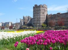 Tulips near the walls of Antalya, Tower Bridge, Rafting, Emperor, Tulips, Istanbul, Knight, Amazing, Buildings