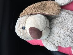 Found at Manchester Airport on 05 Sep. 2016 by Lisa: Found in meet & greet car park! Manchester Airport, Sep 2016, Northern England, Car Park, Pet Toys, Plane, Lost, Teddy Bear, Train