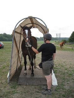 Jaana Pohjola's dissertation explored ways to use clicker training and positive reinforcement training techniques to improve horses' trailer loading behavior. The different obstacles used in the study let the horse master trailer loading in small pieces, rather than dealing with the whole trailer.