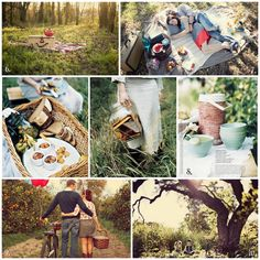 Image result for donna hay autumn