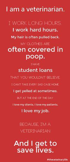 Why #veterinarians rock.