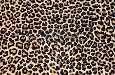 Stil in Nürnberg | Stilberatung | Leopard Fell
