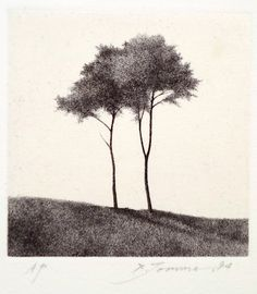 Shigeki Tomura was born in 1951 in Hachinohe, Japan. He participated in the Kokuga Association exhibitions He is devoted to printmaking, drypoint and etching, in particular. Although Tomura makes beautiful drawings and watercolors, the line Landscape Drawings, Landscape Art, Art Drawings, Landscapes, Gravure Illustration, Illustration Art, Drypoint Etching, Davidson Galleries, Tree Sketches