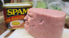 You Can't Unsee Donald Trump in Spam Form Welcome to your new nightmare