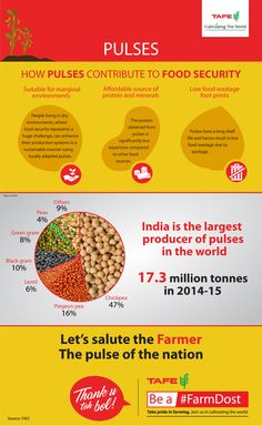 2016 is the International Year of Pulses. #India is the world's largest producer of pulses and we are lucky to have access to such a large number of them. The infographic below shows us how versatile, hearty and nutritious these seemingly humble crops are. #ThankYouTohBol to our farmers for cultivating these delights for us.  Be a #FarmDost. Take pride in farming. Join us in cultivating the world. #IYP2016 #pulses