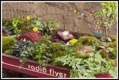 Welcome to the world of Fairy Gardens - A seasonal fairy garden stays parked outside the store in a vintage Radio Flyer wagon.