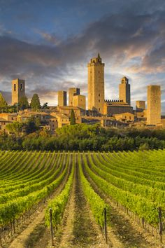 The 20 Most Beautiful Places in Italy San Gimignano, Tuscany Siena Toscana, Siena Italy, Tuscany Italy, Italy Map, Italy Italy, Sorrento Italy, Capri Italy, Naples Italy, Firenze Italy
