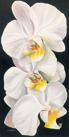 Easy Paintings, Landscape Paintings, Oil Paintings, White Orchids, Orchid Flowers, Purple Orchids, White Flowers, Orchid Cake, Orchid Bouquet