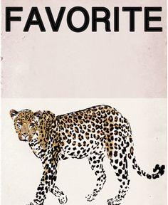 Leopard favorite
