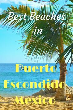 Love surfing or do you just want to chill out in a beach lounger? This is your complete guide to the beaches of Puerto Escondido Oaxaca Mexico