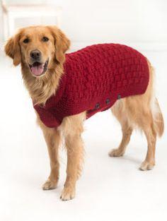 Gardez votre toutou au chaud et à la mode dans cet abordable chandail tricoté à la main.