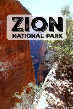 Trip Report | Zion National Park | Hi Sugarplum! | Bloglovin'